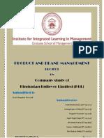 Project_HUL.pdf