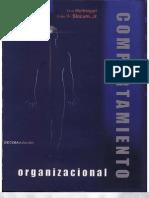 Las Conductas de Los Equipos y El Liderazgo Hellriegel 10 Edicion