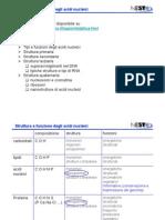 7-L2_AcidiNucleici