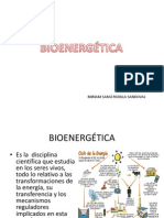 14.-BIOENERGETICA