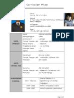Curriculum Vitae 2013.doc