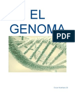 Biologia El Genoma