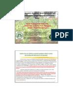 Sotomayor Conceptos Para Mejorar Recomendaciones de Fertilizacion Experiencias en Puerto Rico