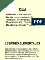 LESIONES ELEMENTALES