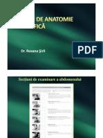 Anatomie normala