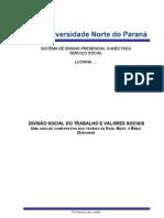 Divisão Social do Trabalho e Valores Socias.doc