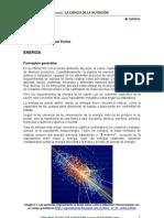 Capitulo4 Libro Nutricion de Las Aves