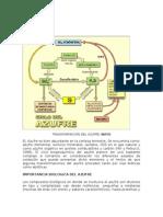 TRANSFORMACIÓN DEL AZUFRE.doc