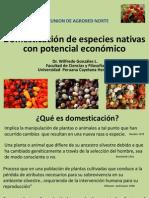 Gonzales, W. Domesticación de especies nativas con potencial económico