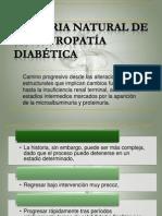 historianaturaldelanefropatadiabtica-100928212900-phpapp02