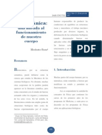 Biomecanica Mirada Centro Nuestro Cuerpo
