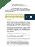 RECURSOS MINEROS SEMINARI 2013.docx