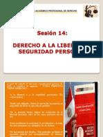 Diapositivas 2012-II Sesion Xiv