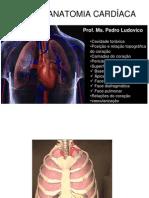 Anatomia e Relacoes Do Coracao