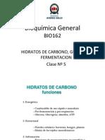 5 Hidratos Carbono Glicolisis Fermentacion
