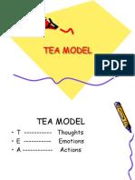 4d2a5tea Model