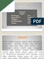 Presentasi Amina