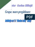 1proiectactivitateintegrata(2)