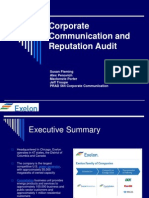 Corporate Communication and Reputation Audit