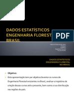 DADOS ESTATÍSTICOS Engenharia Florestal