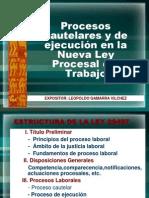 Leopoldo Gamarra - Procesos Cautelares en NLPT