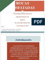 EXPOSICIÓN-ROCAS FOSFATADAS 101A