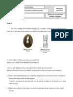 Exercício de inquérito (correcão)