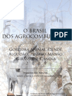 Agrocombustiveis_impacto Da Lavoura, Meio Ambiente e Sociedade