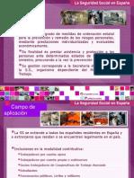 sistemadelaseguridadsocial-2013