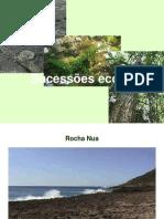 Sucessao_ecologica