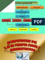 Perfil y Competencias Del t.m. 2