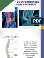 Prevencion de Enfermedades de La Columna Ver.