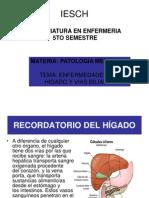 Enfermedades Del Higado Isech
