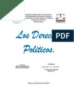 Los Derechos Politicos