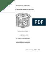 HIDROBORACION INORGANICA (1)