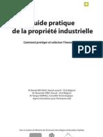 Guide pratique de la propriété industrielle