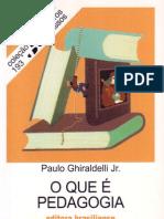 31343912 Paulo Ghiraldelli O Que e Pedagogia
