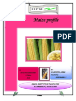 MAIZE Profile