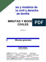 Minutas y Modelos de Demandas Civiles