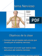 El Sistema Nervioso Ppt 1