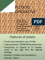 Potato cooperative