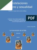 Constelaciones Familiares y Sexualidad