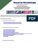 Atlas de Bacteriología.pdf