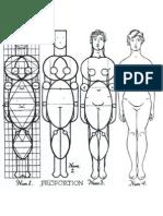 Anatomia Proporcion 2