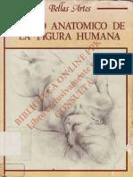 Dibujo Anatomico de La Figura_Humana