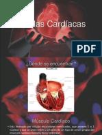 Células Cardíacas final