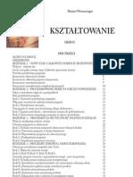 2. Kształtowanie - D. Wereszczagin