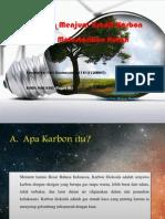 Indonesia menjual kredit karbon untuk melestarikan hutan