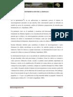 LABORATORIO 1-BIOTECNOLOGIA