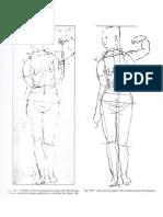 Anatomia Geometria Femenina